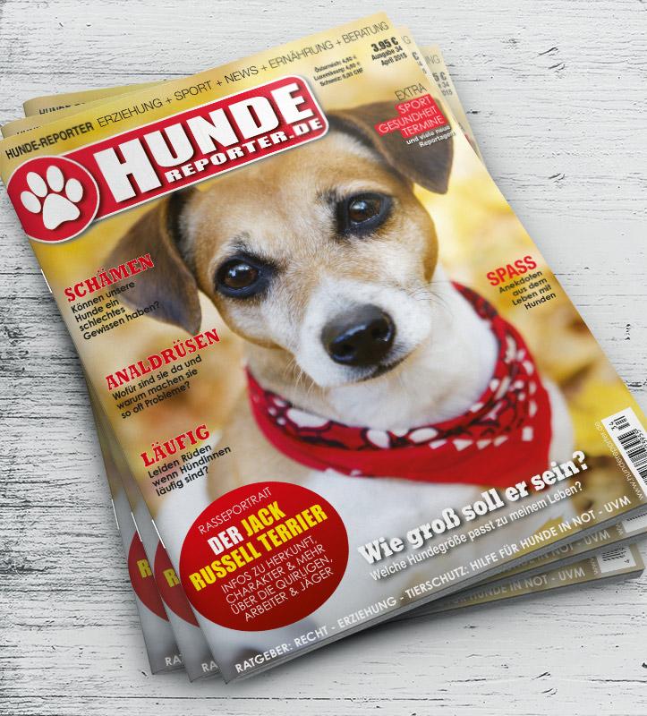 Hundereporter_34_Cover