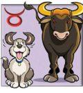 Horoskop - Sternzeichen Stier