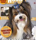 Hundereporter Magazin Ausgabe 50