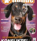 Hundereporter Magazin Ausgabe 67