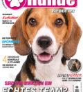 Hundereporter Magazin Ausgabe 68