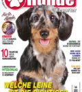 Hundereporter Magazin Ausgabe 73