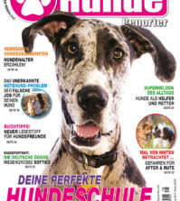 Hundereporter Magazin Ausgabe 78