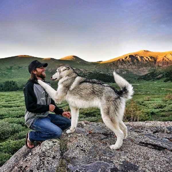 hund-freiheit-Loki-the-Wolfdog-013
