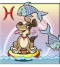Horoskop - Sternzeichen Fische