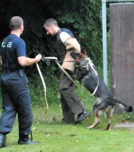DIe Hunde der Bundespolizei - Ein Artikel aus dem Hundereporter Magazin Ausgabe 2
